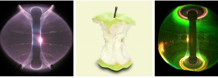 Spherical tokamaks compared with apples